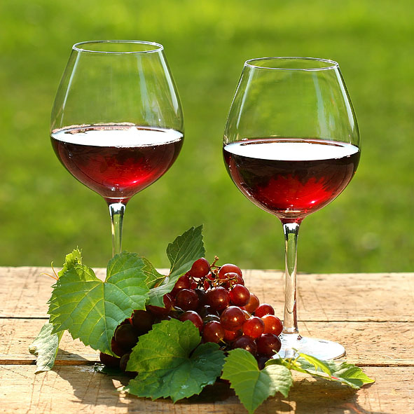Summer Reds Wine Tasting 14th June 2019 7.15pm